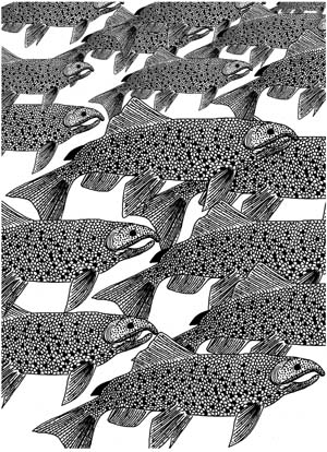 Chinook Salmon Background Unmounted Rubber Stamp