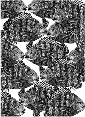 Striped Fish Background Unmounted Rubber Stamp