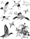 Birds Unmounted Rubber Stamp Sheet