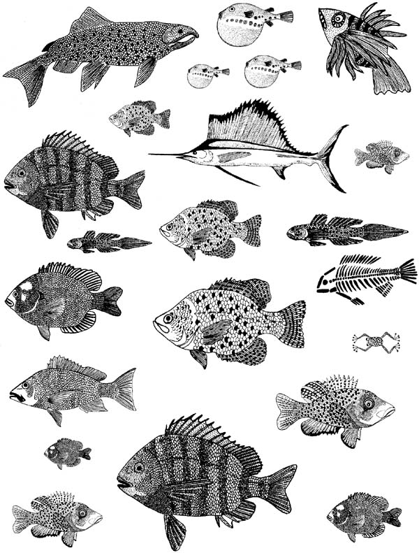Fish Unmounted Rubber Stamps
