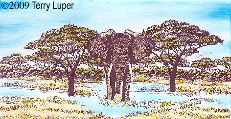 Elephant checkbook cover by Terry Luper - January 18, 2009