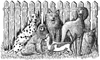 Dogs Unmounted Rubber Stamp Kit