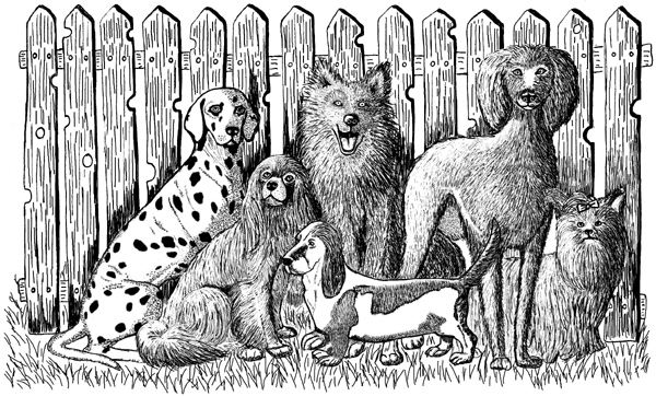 Dogs Unmounted Rubber Stamp