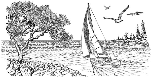 Sailboat Sailing Unmounted Rubber Stamp