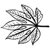 Aralia Leaf Little Stamper